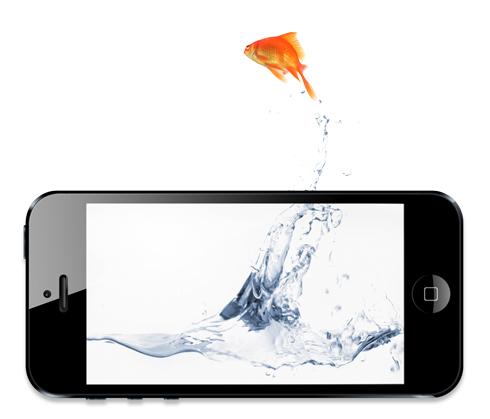 Goldfish_iPhone