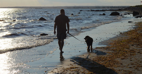 Adelie the dog and I at the beach